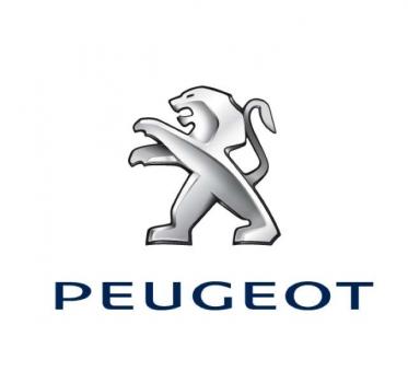 Reprogrammation moteur Peugeot